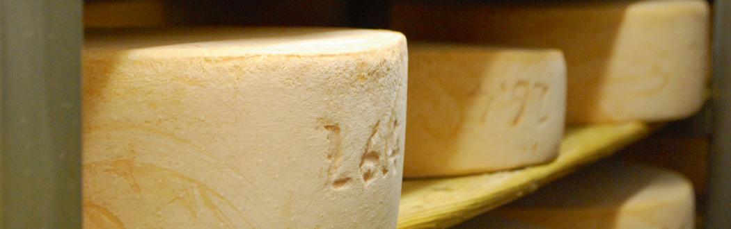 Ziegelhütte Kirchheim Käseherstellung
